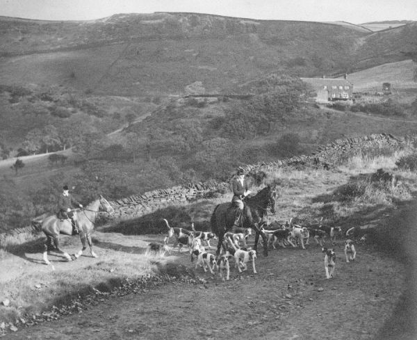 Hunting with hounds, possibly the Rockwood harriers of West Yorkshire, 1930s